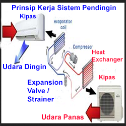 www.WikiKomponen.com - Page 16 of 19 - Selamat Datang Di Pusat ...