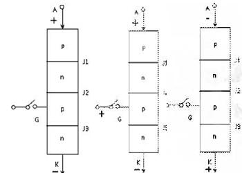 Jenis Tipe SCR Menurut Bentuk Dan Karakteristik Bias